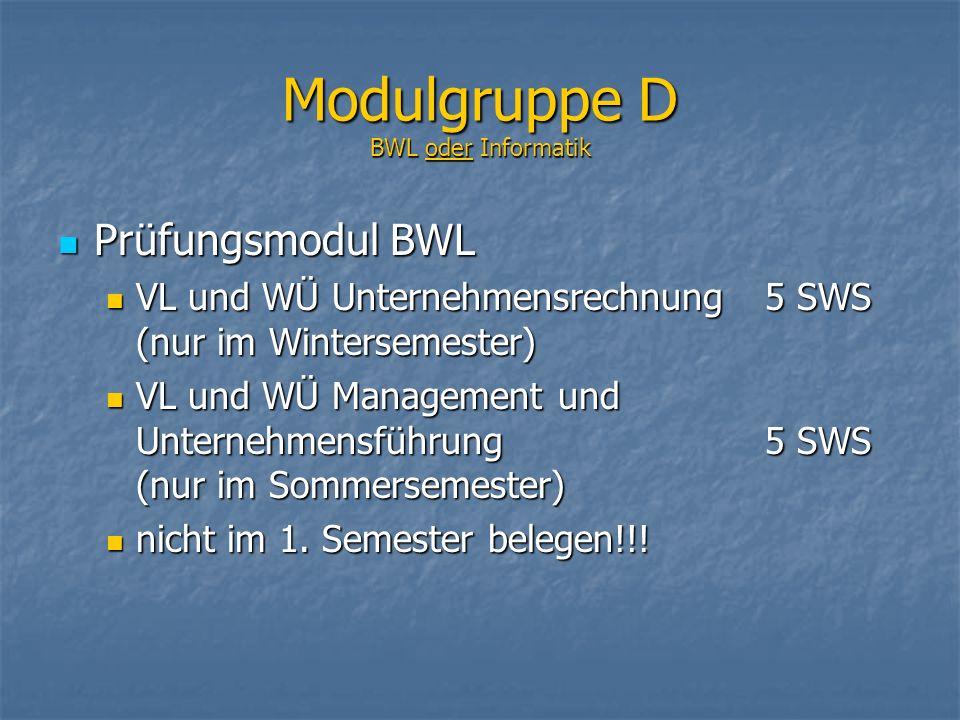 Modulgruppe D BWL oder Informatik