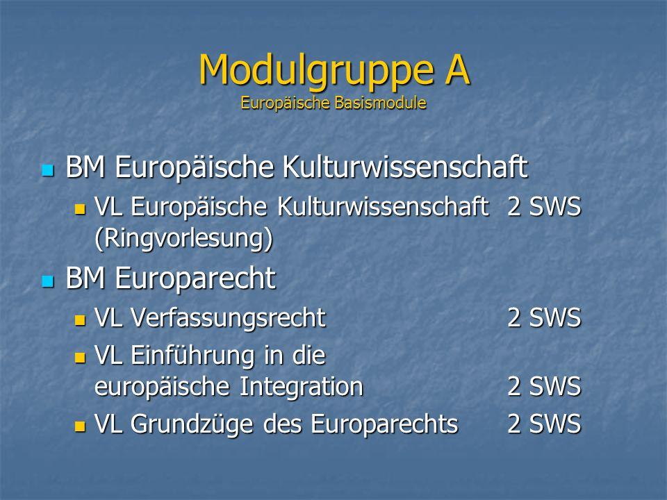 Modulgruppe A Europäische Basismodule