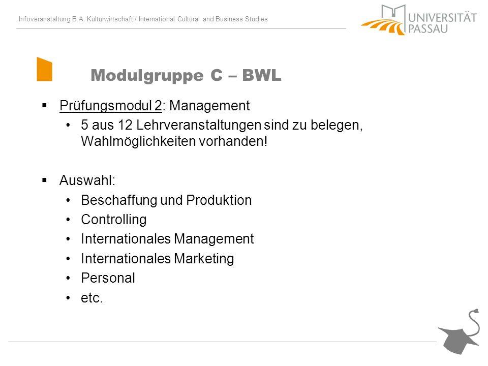 Modulgruppe C – BWL Prüfungsmodul 2: Management