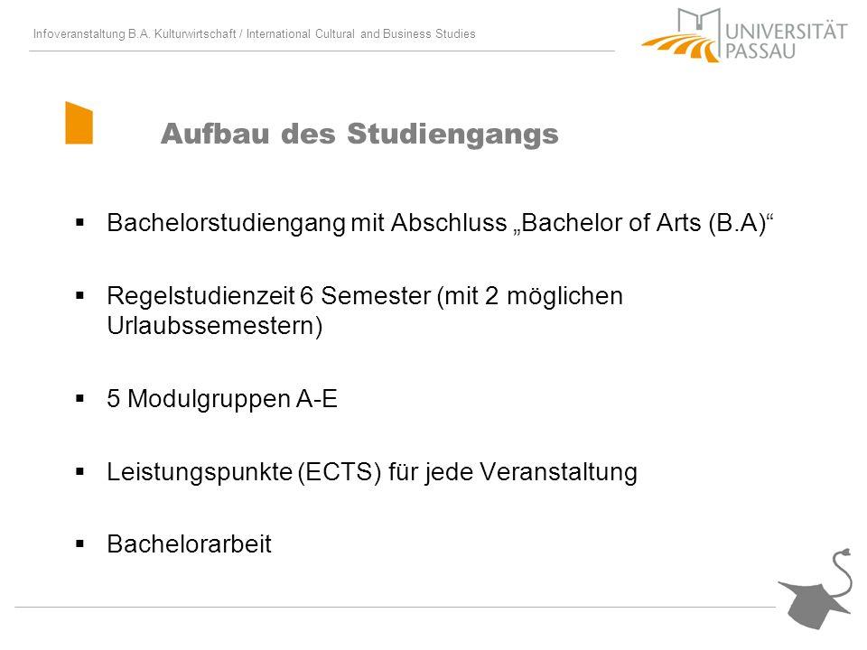 Aufbau des Studiengangs