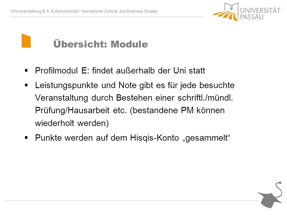 Übersicht: Module Profilmodul E: findet außerhalb der Uni statt
