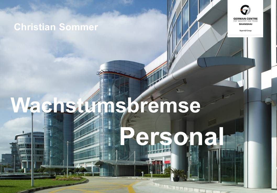 Christian Sommer Wachstumsbremse Personal