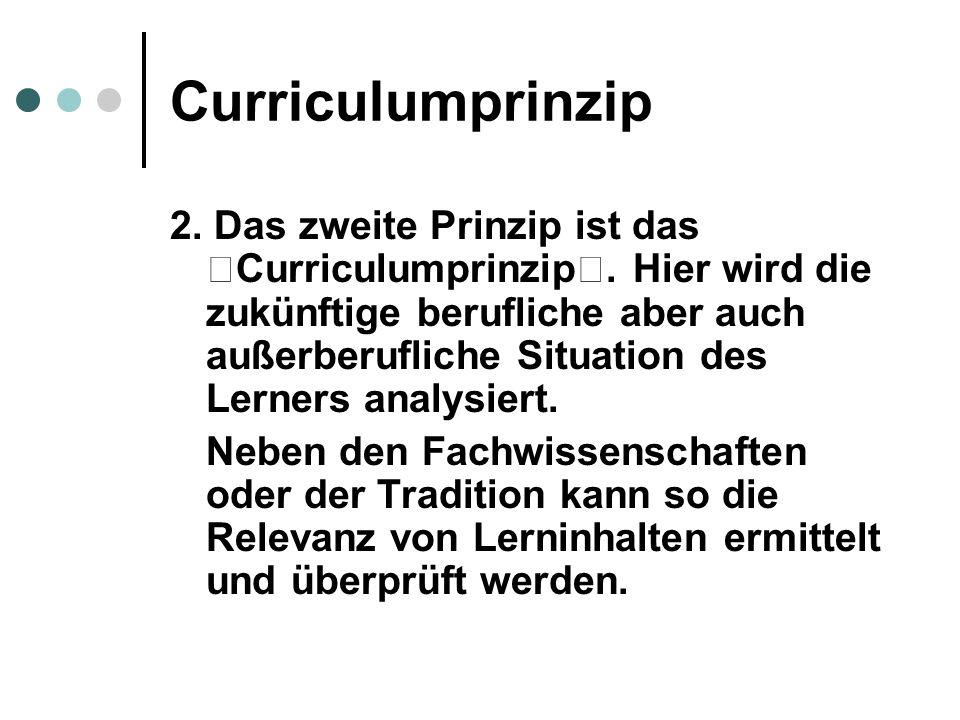 Curriculumprinzip