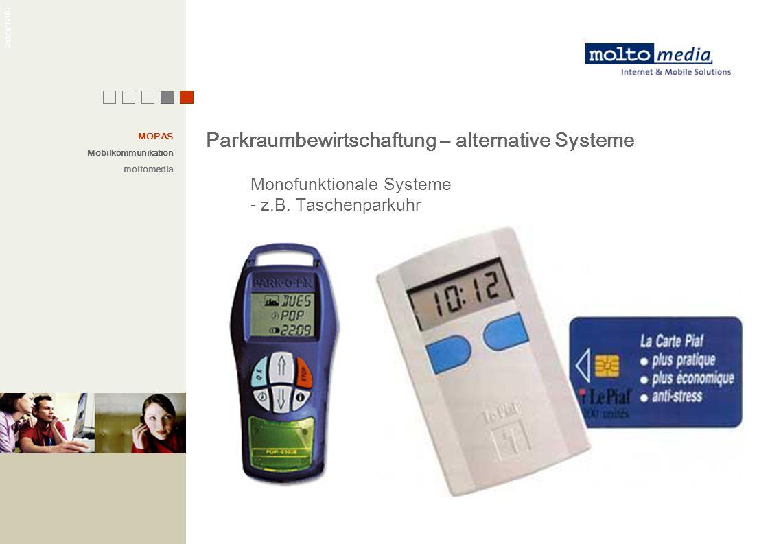 Parkraumbewirtschaftung – alternative Systeme