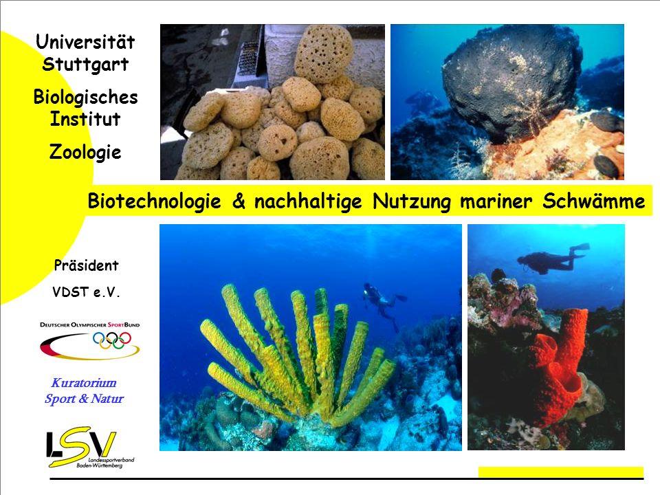 Universität Stuttgart Biologisches Institut Kuratorium Sport & Natur