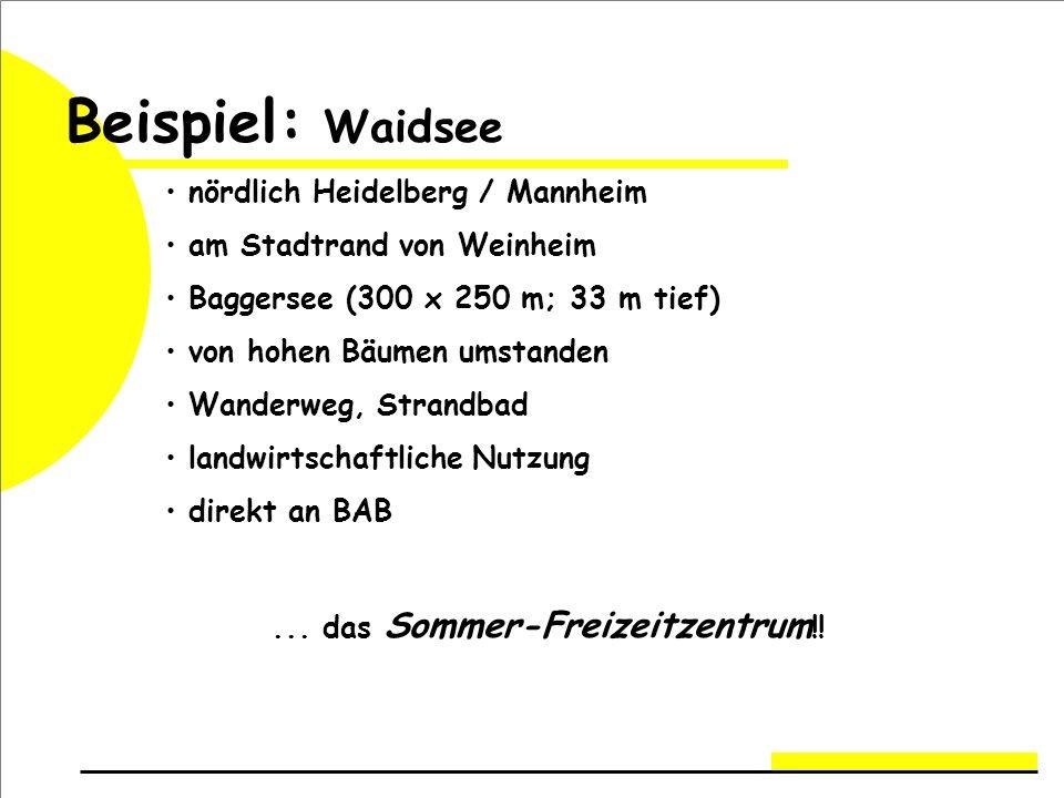 Beispiel: Waidsee nördlich Heidelberg / Mannheim