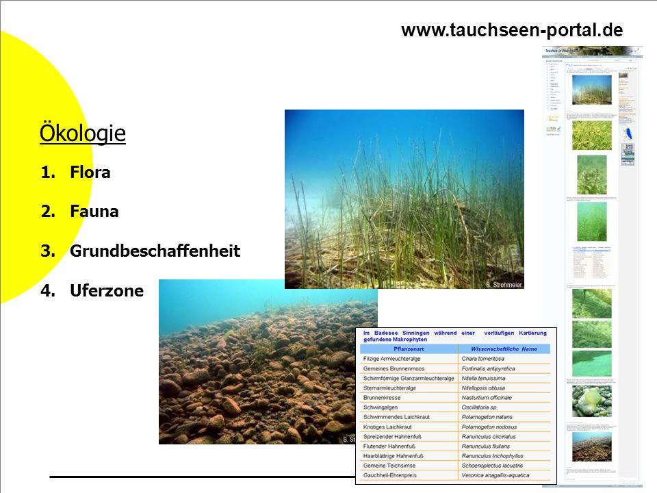Ökologie www.tauchseen-portal.de Flora Fauna Grundbeschaffenheit