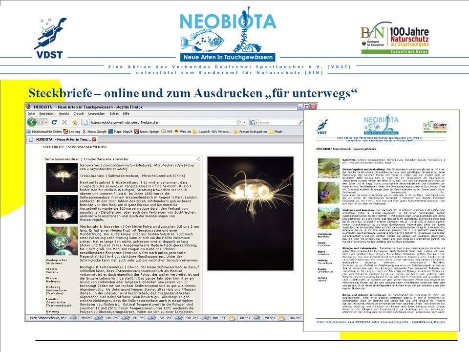 """Steckbriefe – online und zum Ausdrucken """"für unterwegs"""