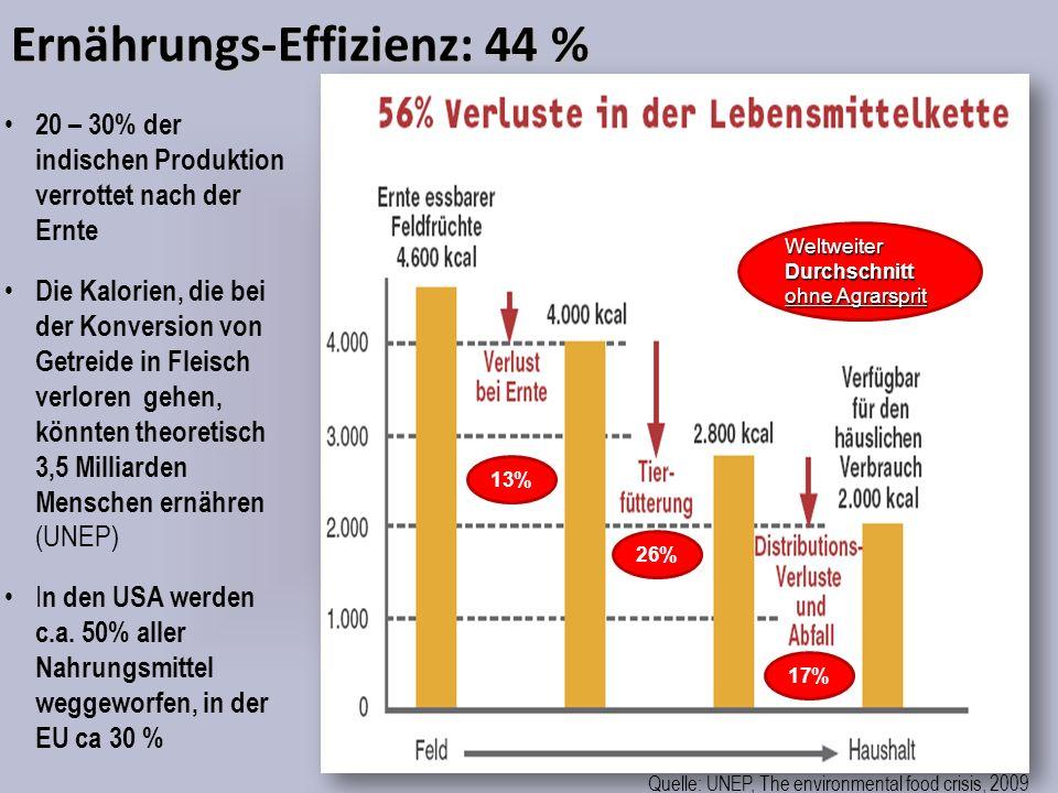 Ernährungs-Effizienz: 44 %