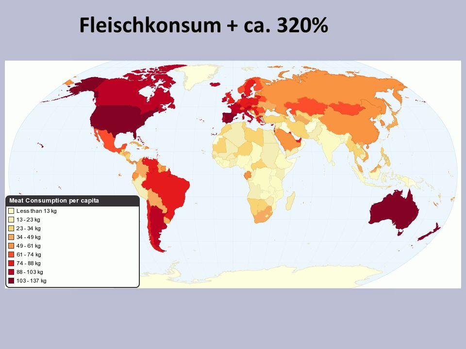 Fleischkonsum + ca. 320% Asien: Kleine Steigerung pro Kopf, grosse Wirkung pro Planet
