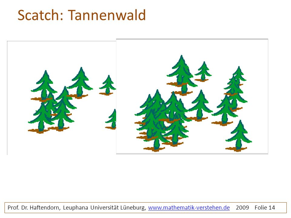 Scatch: Tannenwald tannenwald. Prof. Dr.