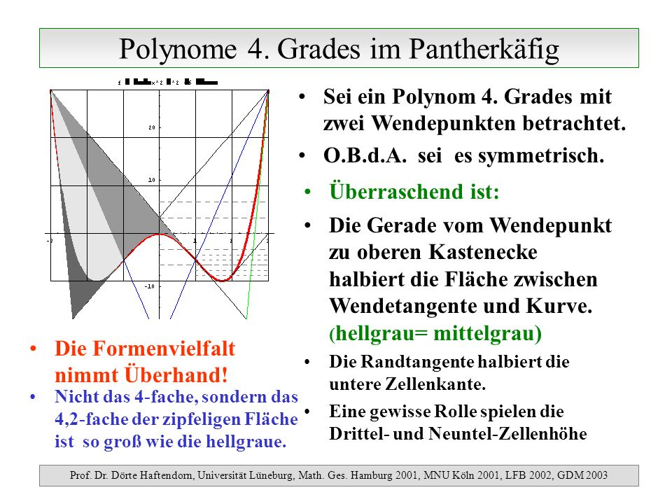 Polynome 4. Grades im Pantherkäfig
