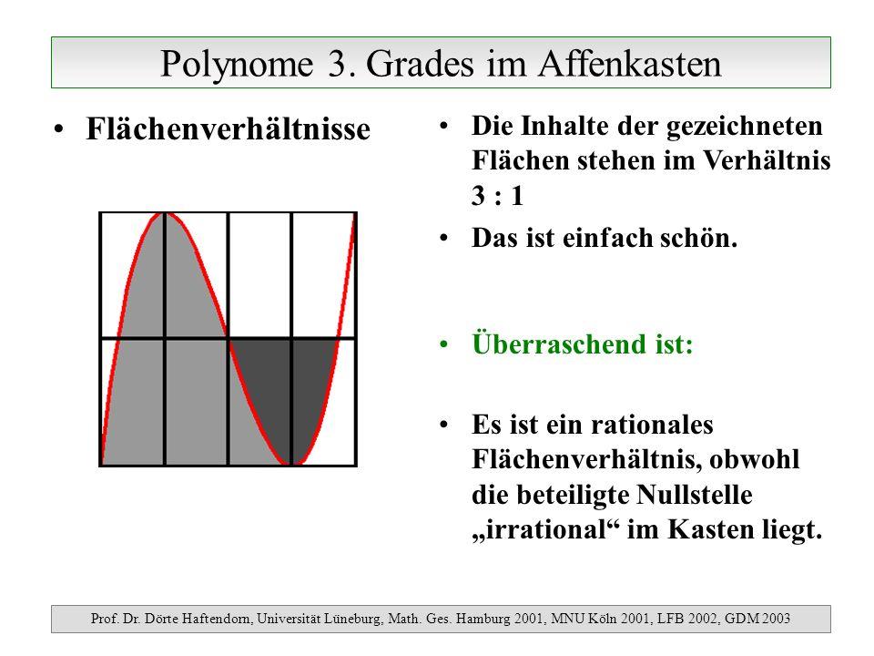 Polynome 3. Grades im Affenkasten