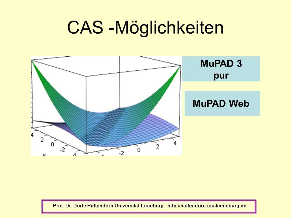 CAS -Möglichkeiten MuPAD 3 pur MuPAD Web