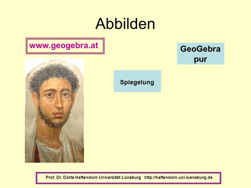 Abbilden www.geogebra.at GeoGebra pur Spiegelung