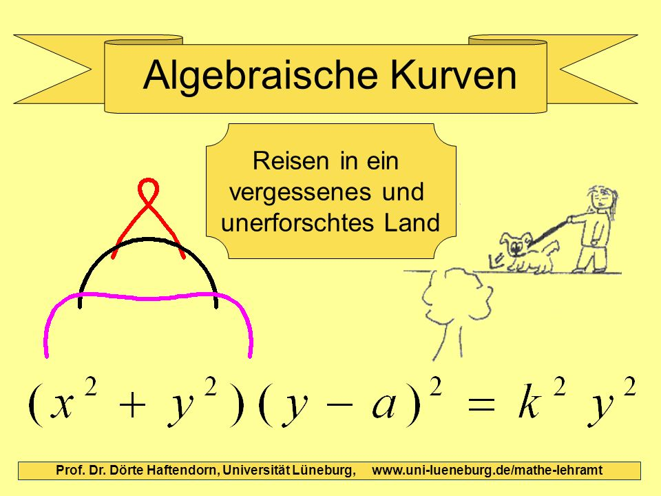 Algebraische Kurven Reisen in ein vergessenes und unerforschtes Land