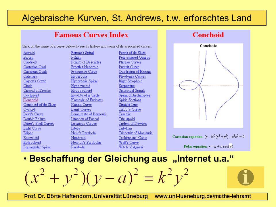 Algebraische Kurven, St. Andrews, t.w. erforschtes Land