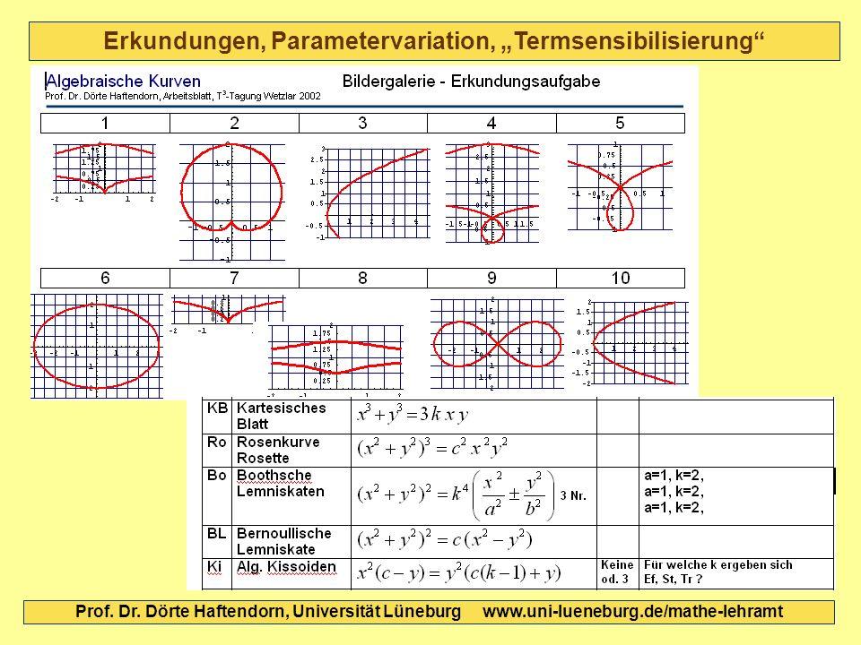 """Erkundungen, Parametervariation, """"Termsensibilisierung"""
