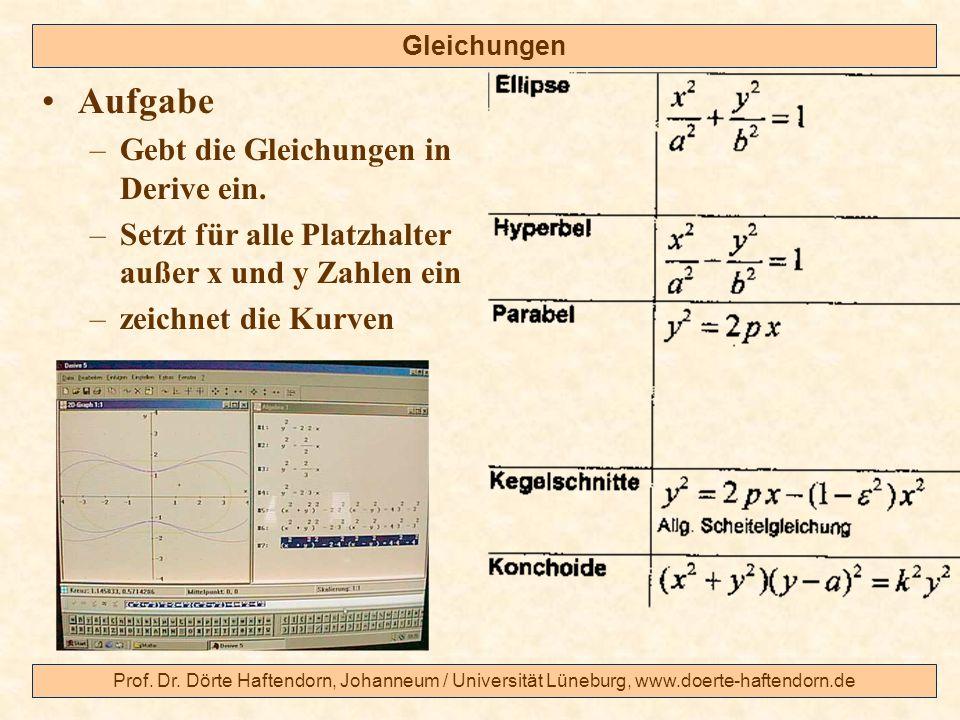 Aufgabe Gebt die Gleichungen in Derive ein.