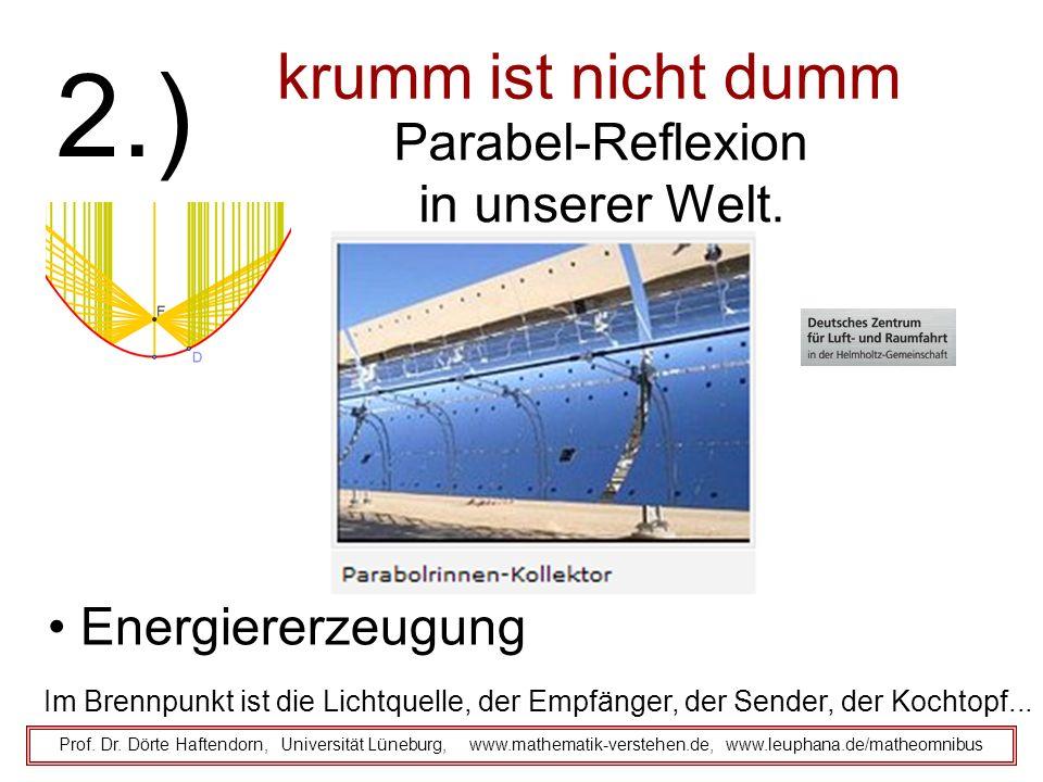 2.) krumm ist nicht dumm Parabel-Reflexion in unserer Welt.