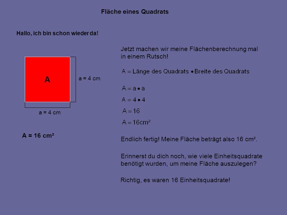 A Fläche eines Quadrats Jetzt machen wir meine Flächenberechnung mal