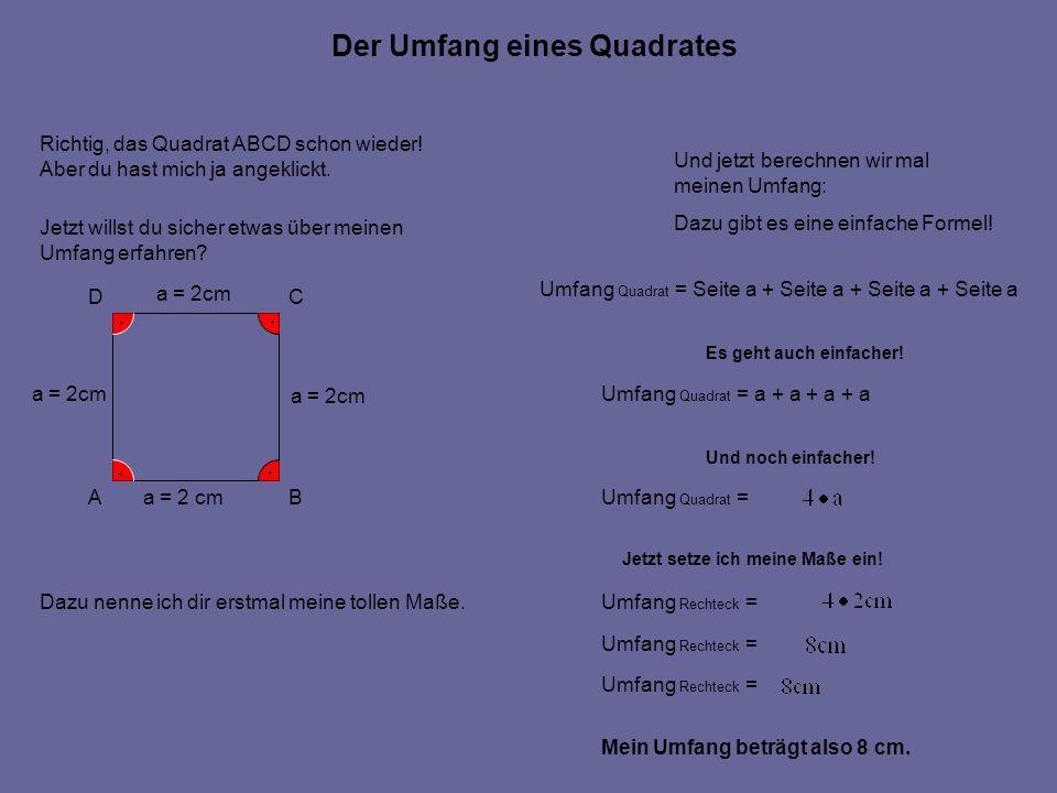 Der Umfang eines Quadrates