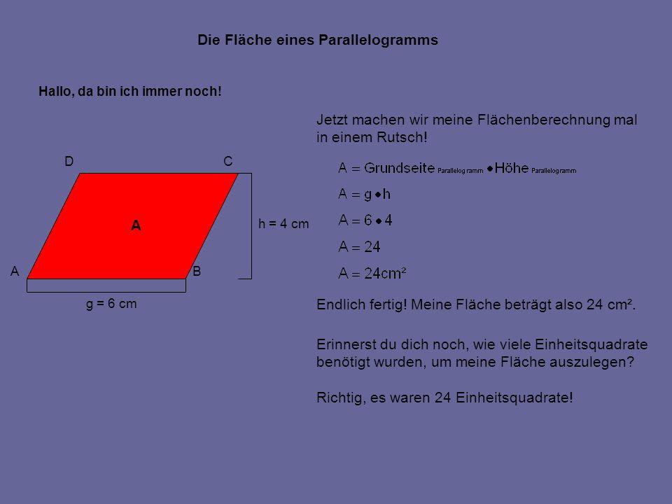 Die Fläche eines Parallelogramms