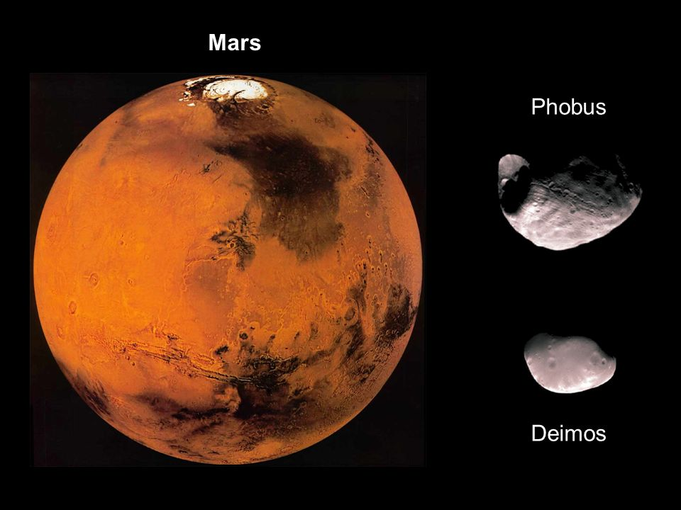 Mars Phobus. Deimos.