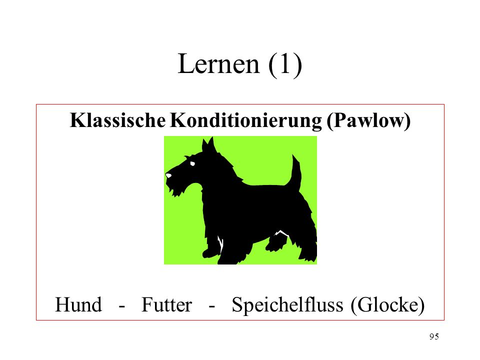 Klassische Konditionierung (Pawlow)