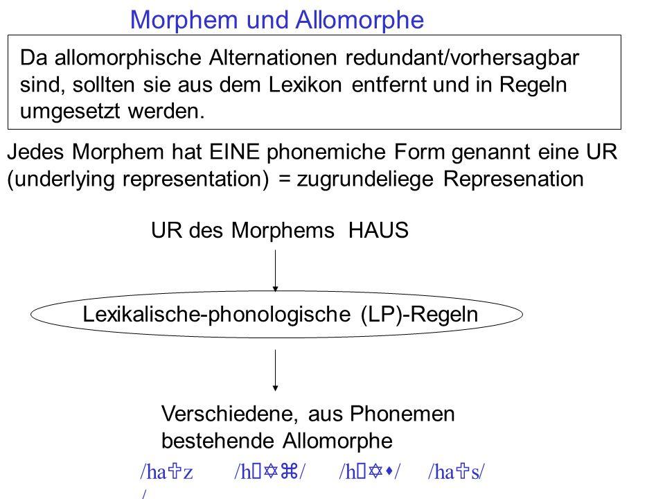 Morphem und Allomorphe