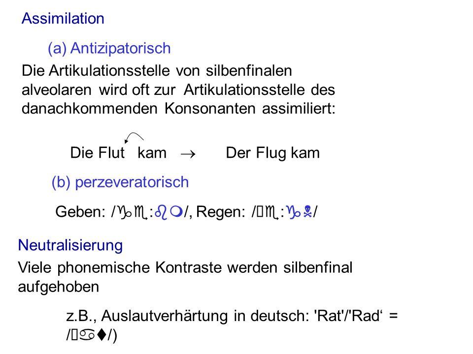 Assimilation (a) Antizipatorisch. (b) perzeveratorisch. Die Flut kam ® Der Flug kam.