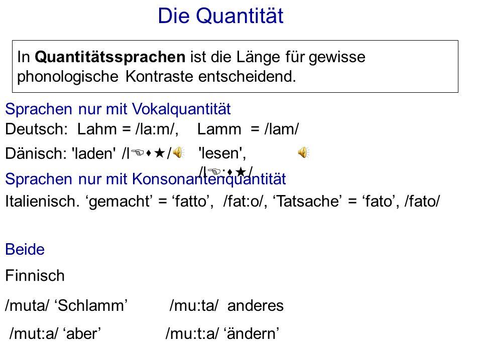 Die Quantität In Quantitätssprachen ist die Länge für gewisse phonologische Kontraste entscheidend.