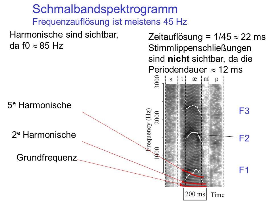 Schmalbandspektrogramm
