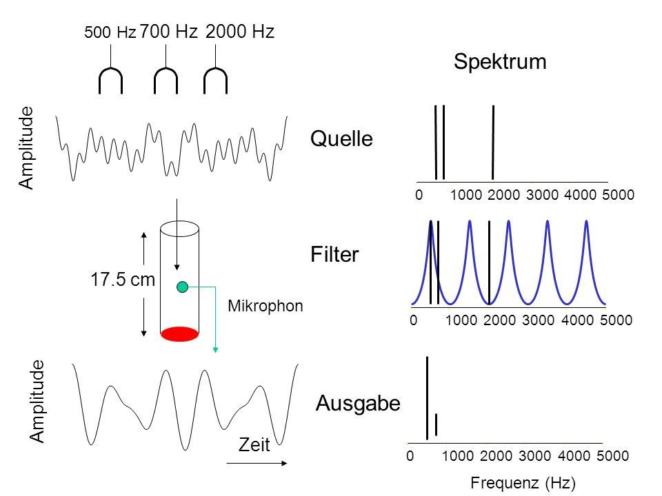 Spektrum Quelle Filter Ausgabe 700 Hz 2000 Hz Amplitude 17.5 cm