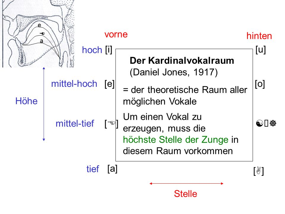 Der Kardinalvokalraum (Daniel Jones, 1917)