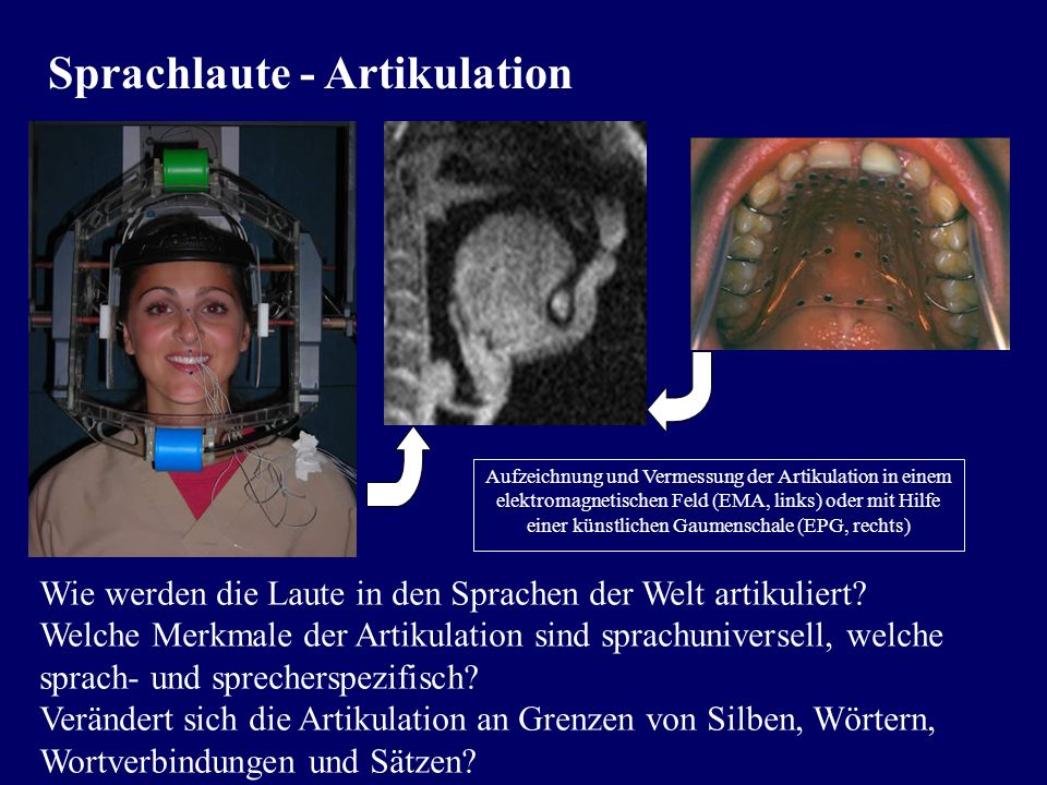 Sprachlaute - Artikulation