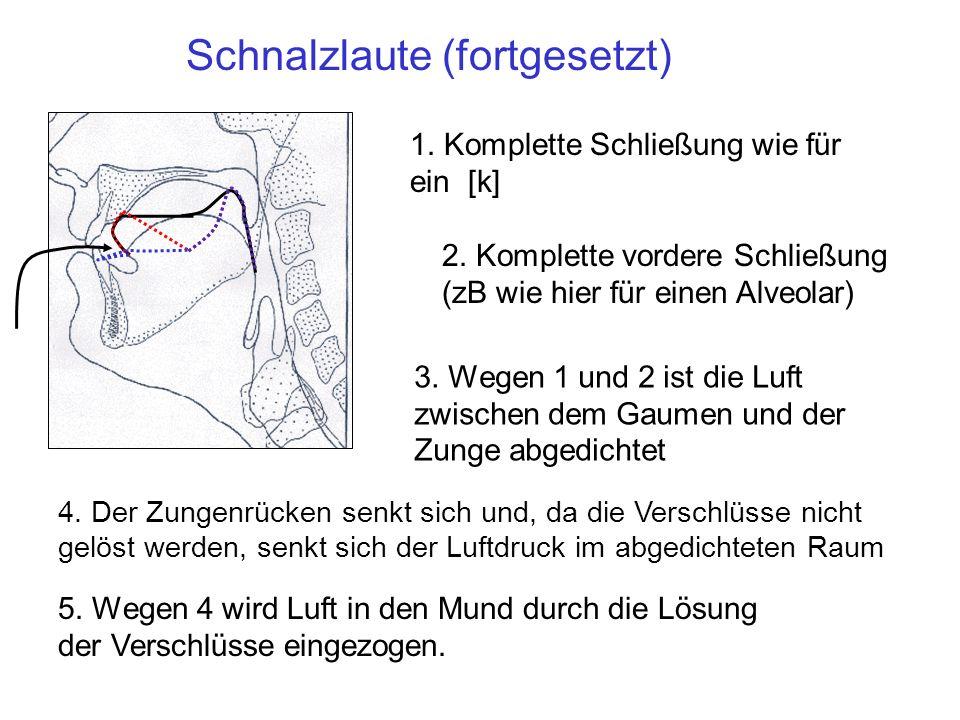 Schnalzlaute (fortgesetzt)