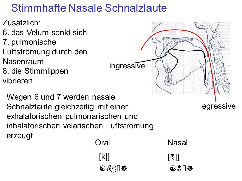 Stimmhafte Nasale Schnalzlaute
