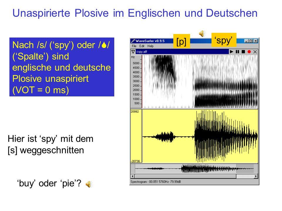 Unaspirierte Plosive im Englischen und Deutschen