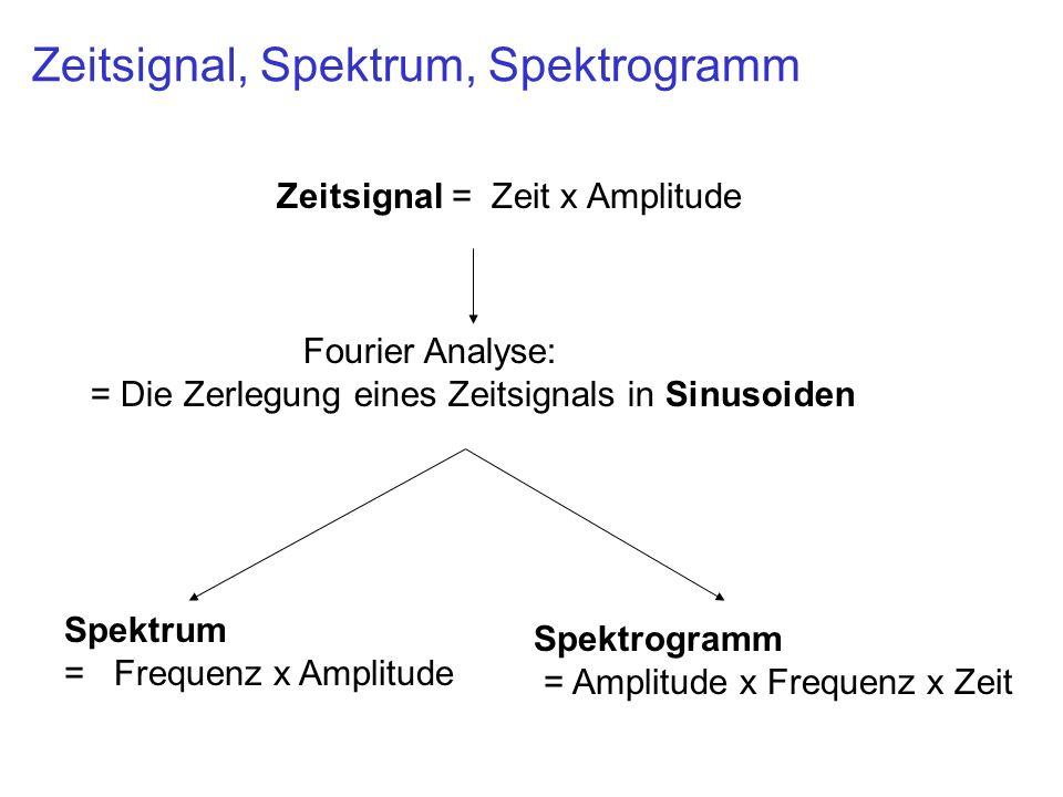 Zeitsignal, Spektrum, Spektrogramm