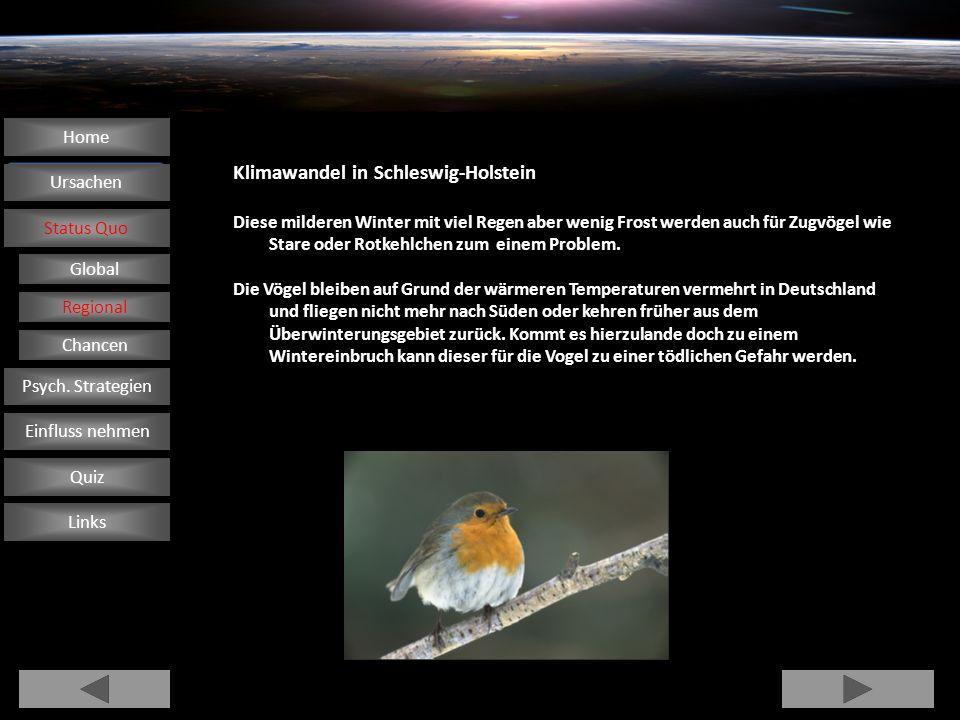 Klimawandel in Schleswig-Holstein