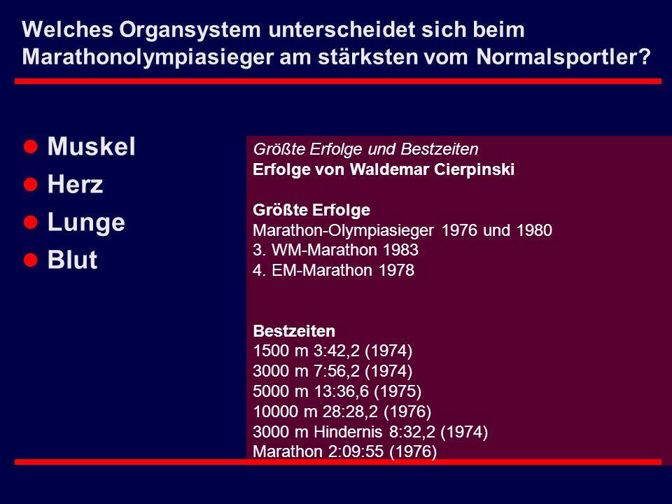 Welches Organsystem unterscheidet sich beim Marathonolympiasieger am stärksten vom Normalsportler