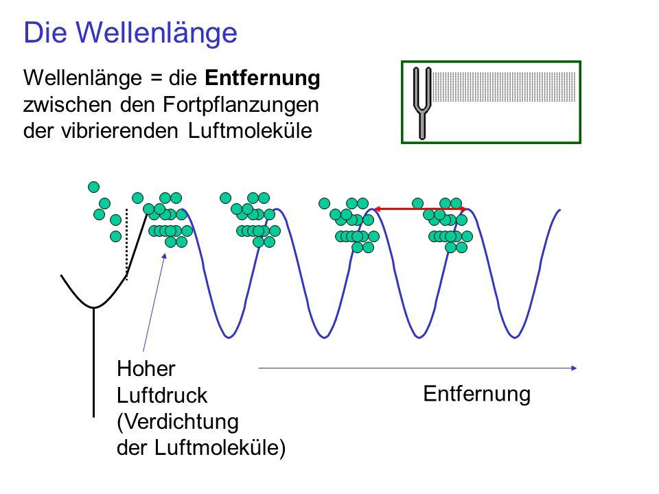 Die Wellenlänge Wellenlänge = die Entfernung zwischen den Fortpflanzungen der vibrierenden Luftmoleküle.