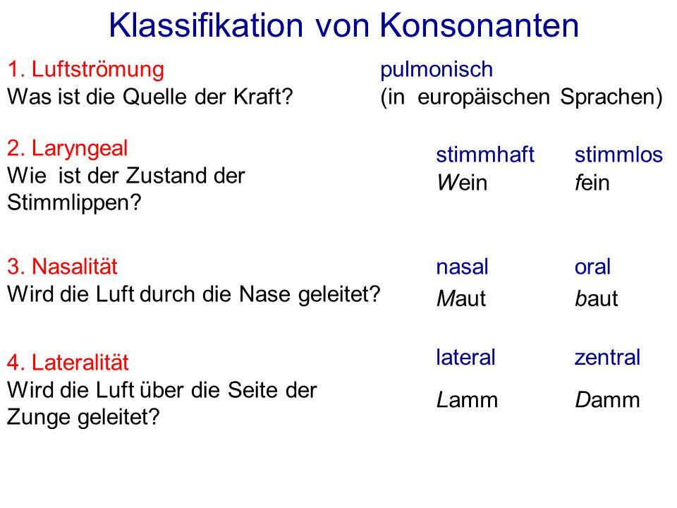 Klassifikation von Konsonanten