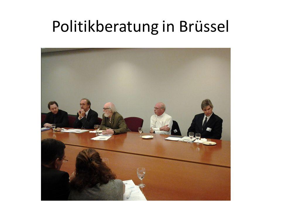 Politikberatung in Brüssel