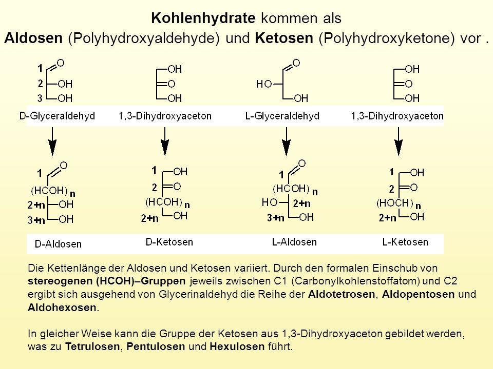 Kohlenhydrate kommen als Aldosen (Polyhydroxyaldehyde) und Ketosen (Polyhydroxyketone) vor .