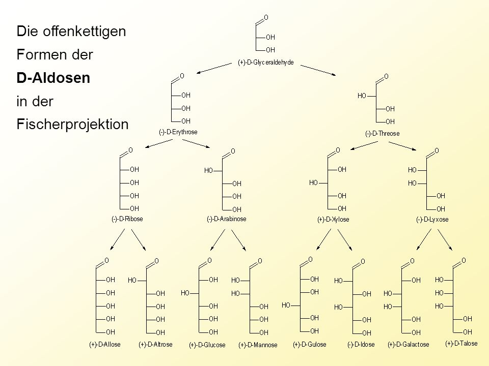Die offenkettigen Formen der D-Aldosen