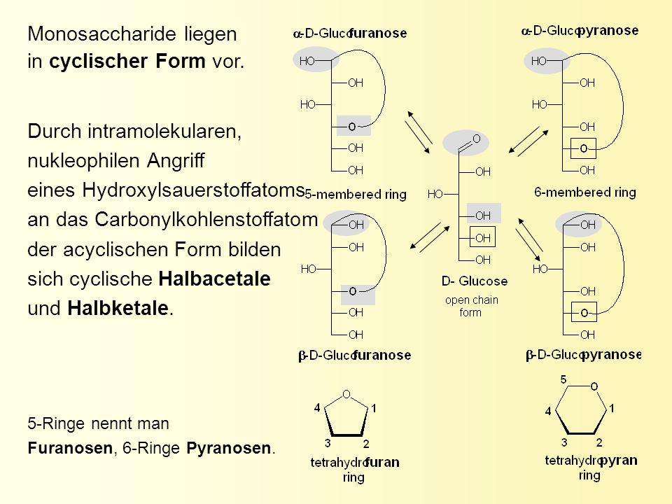 Monosaccharide liegen in cyclischer Form vor.
