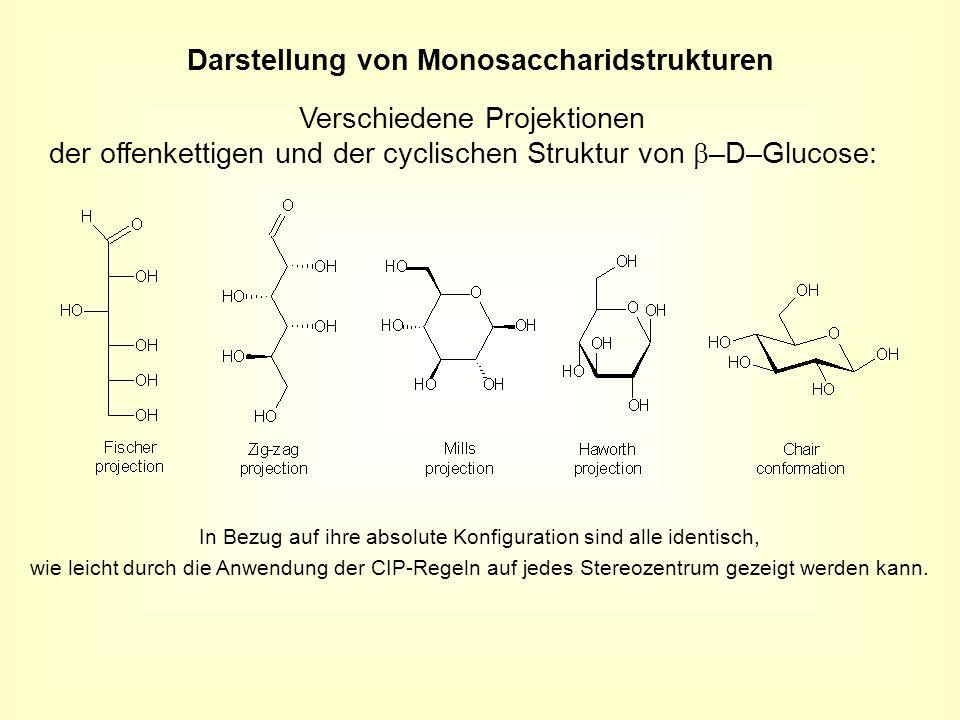 Darstellung von Monosaccharidstrukturen