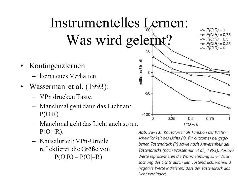 Instrumentelles Lernen: Was wird gelernt